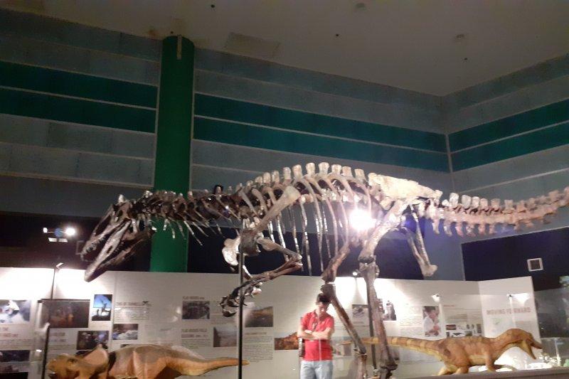 DinoQuest ajak pengunjung ke zaman Cretaceous