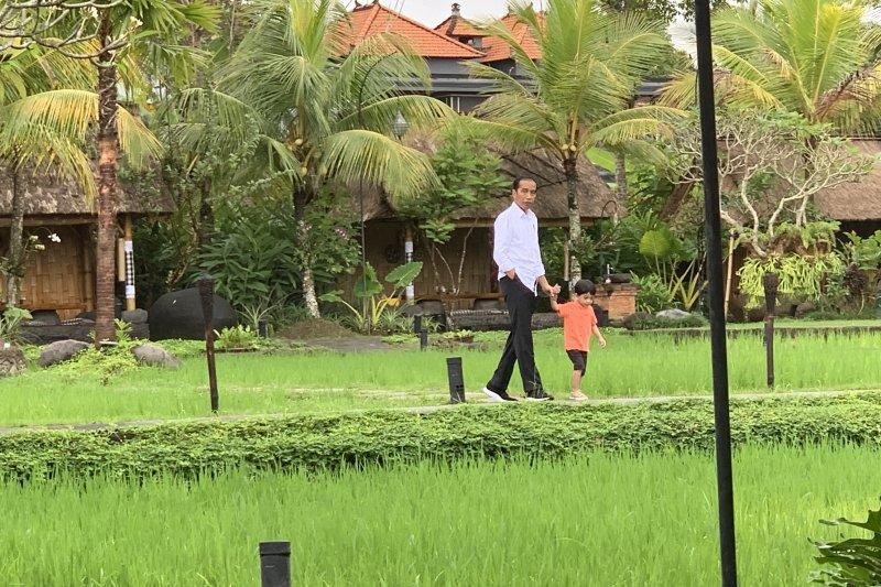 Presiden Jokowi kunjungan kerja sekaligus momong Jan Ethes di Bali