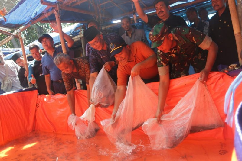 KKP sebut daya beli pembudidaya ikan tumbuh positif
