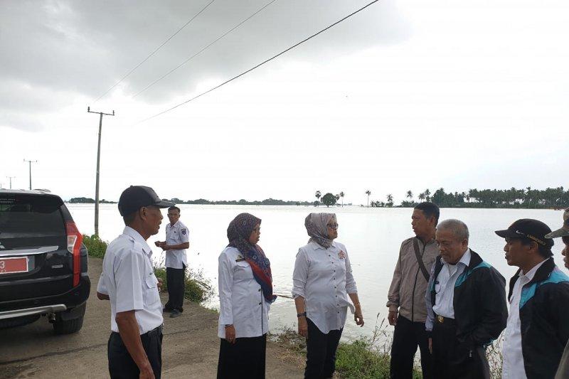 Kementan-Pemprov salurkan bantuan bibit untuk korban banjir