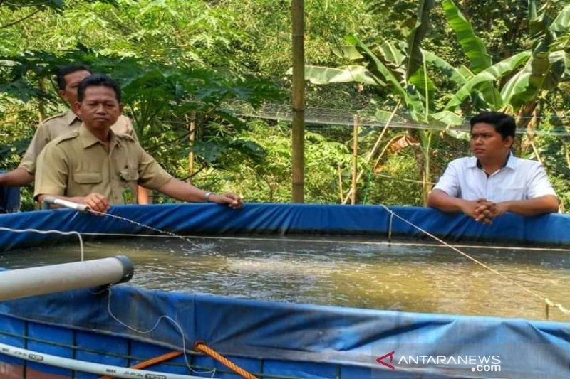 Produksi perikanan Kulon Progo diprediksi turun sekitar 40 persen