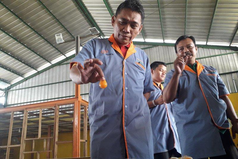 Peternakan Waluyo produksi telur herbal 2,7 ton per hari