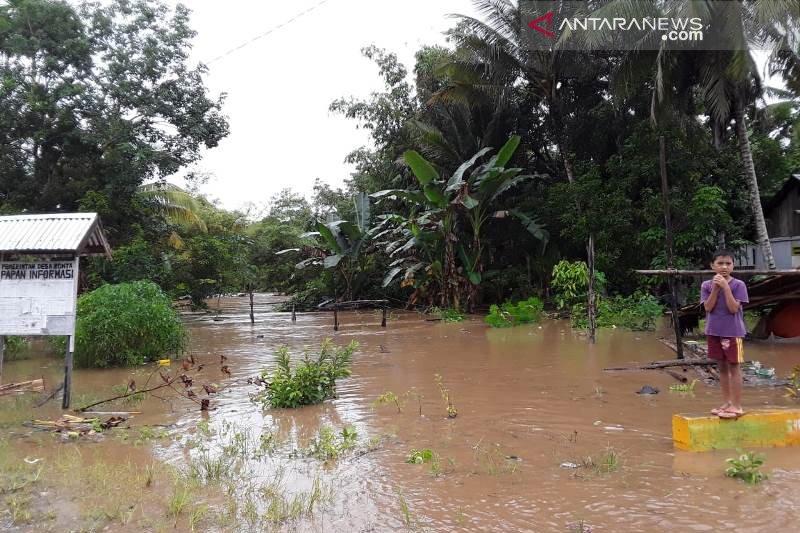 Walhi : Banjir Morowali Utara disebabkan masifnya perambahan hutan