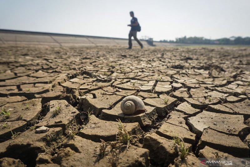 Pemprov Jateng antisipasi dampak kekeringan di daerah-daerah rawan