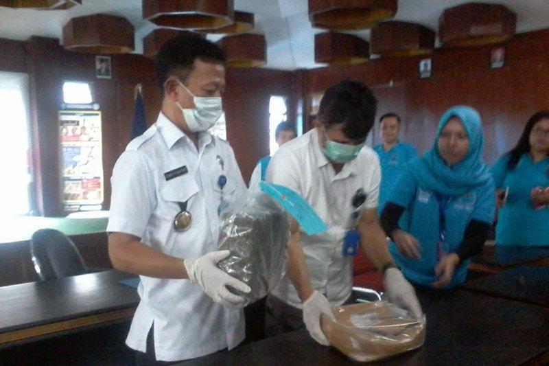 BNNP Sulut: Kasus ganja dua kilogram dalam pemberkasan