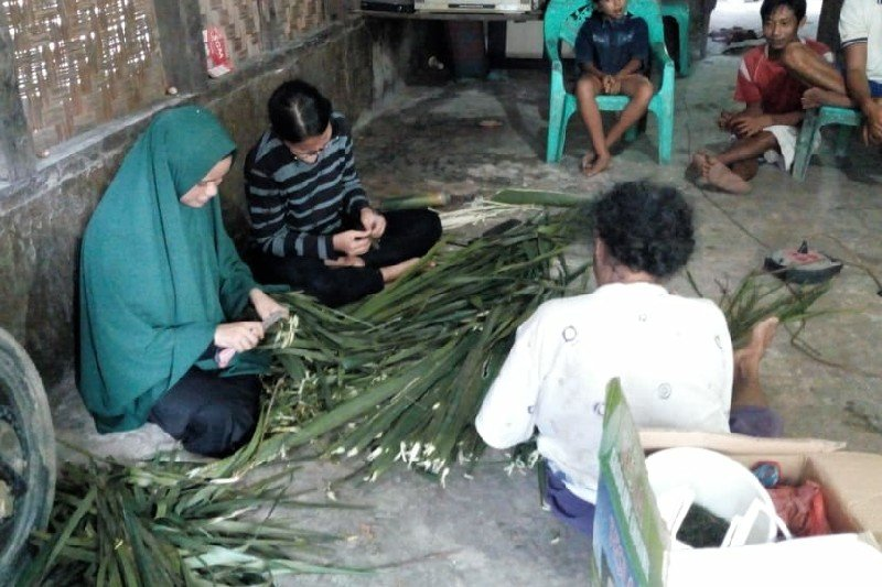 Mahasiswa Unimed manfaatkan limbah daun sawit sebagai antimalaria