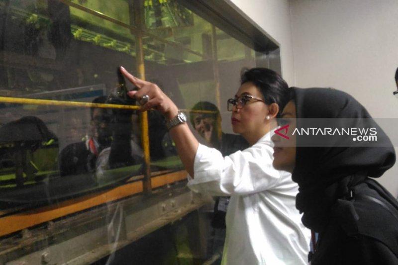 Bupati Nunukan belajar kelola sampah di Jepang