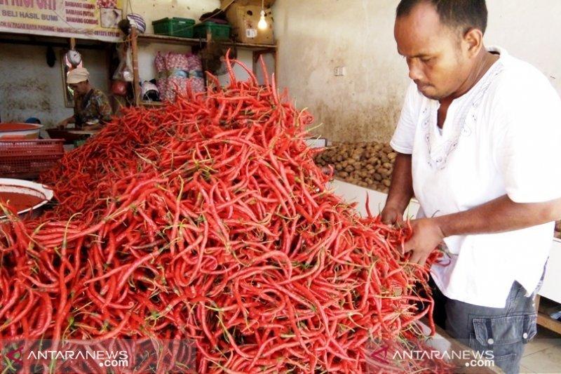 Cabai merah jadi penyumbang inflasi tertinggi di Padang