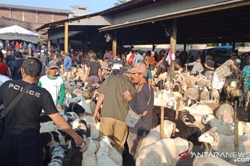 Pemkot Palembang imbau warga beli hewan kurban  bersurat sehat
