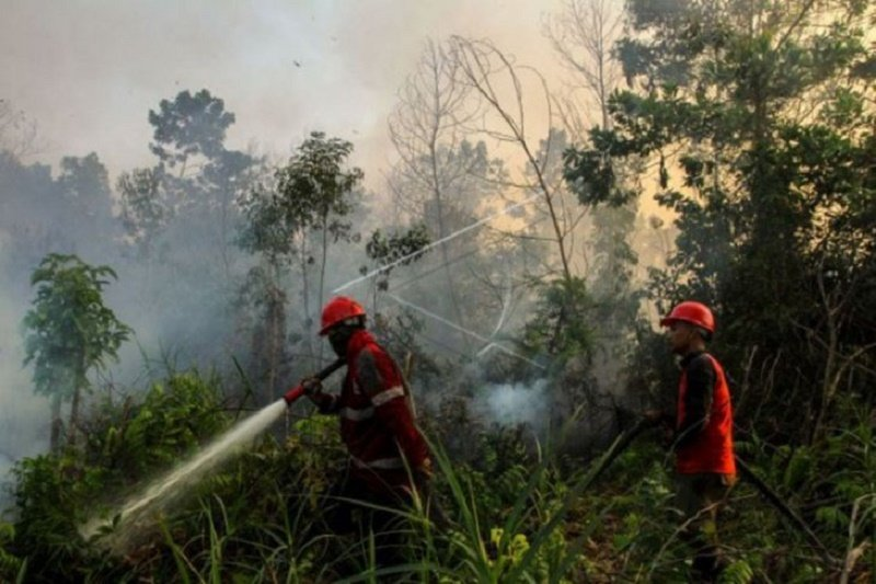 Satgas Riau koreksi KLHK sebut luas karhutla capai 27.683 hektare