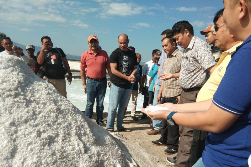 Gubernur NTT tinjau kesiapan panen garam di Nunkurus
