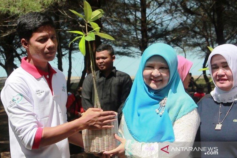 OASE Kabinet Kerja tanam mangrove di Pantai Tiram Padang Pariaman