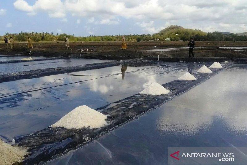 KKP membantu NTB tingkatkan kualitas garam