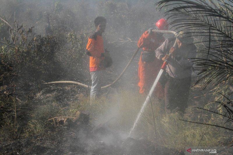 Satgas Karhutla Riau fokus pemadaman kebakaran di Siak dan Pelalawan, begini penjelasannya