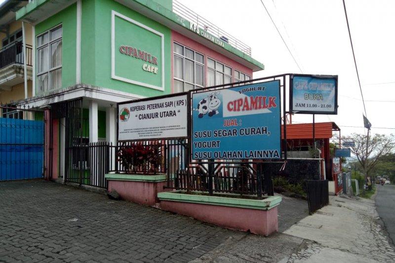 Koperasi Peternak Sapi Cianjur masih kesulitan memenuhi pesanan pabrik