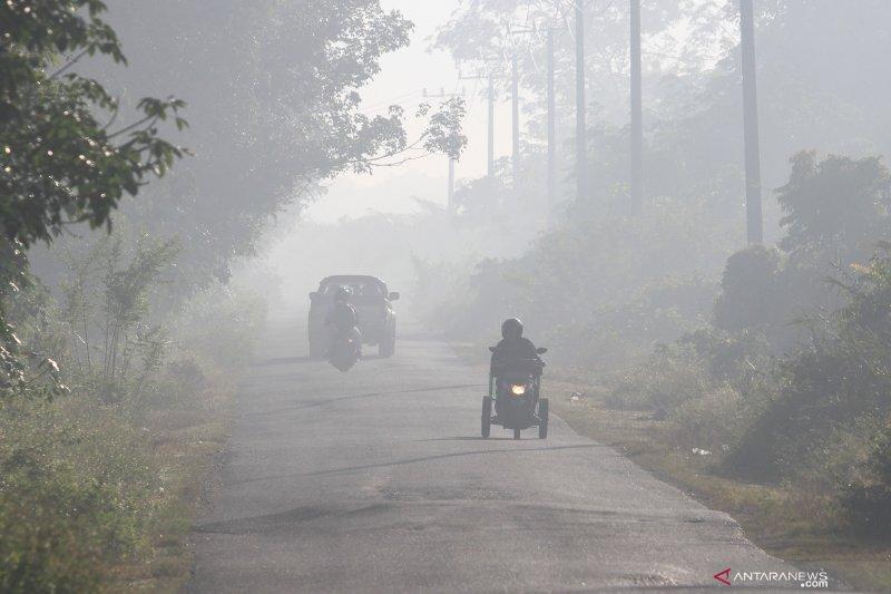 Hingga pertengahan Juli, lebih 30 hektare hutan dan lahan terbakar
