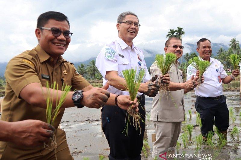 Padang Pariaman potensial jadi sumber pangan nasional