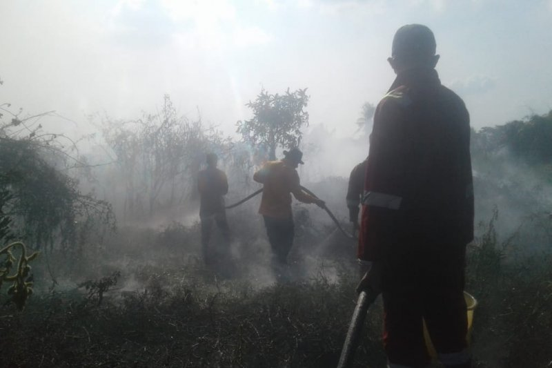 Kebakaran lahan kembali terjadi di Kabupaten Ogan Ilir