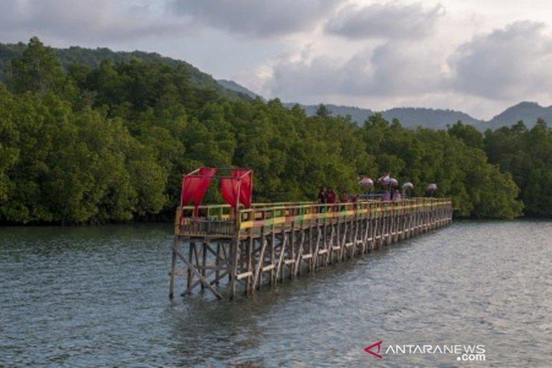 Wisata mangrove kelompok tani hutan