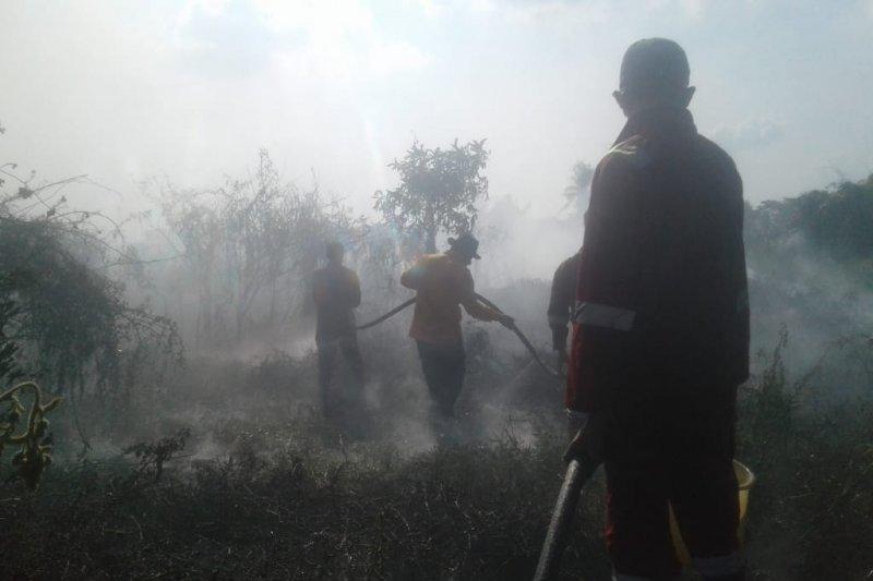 Danrem minta Subsatgas kebakaran  hutan aktif