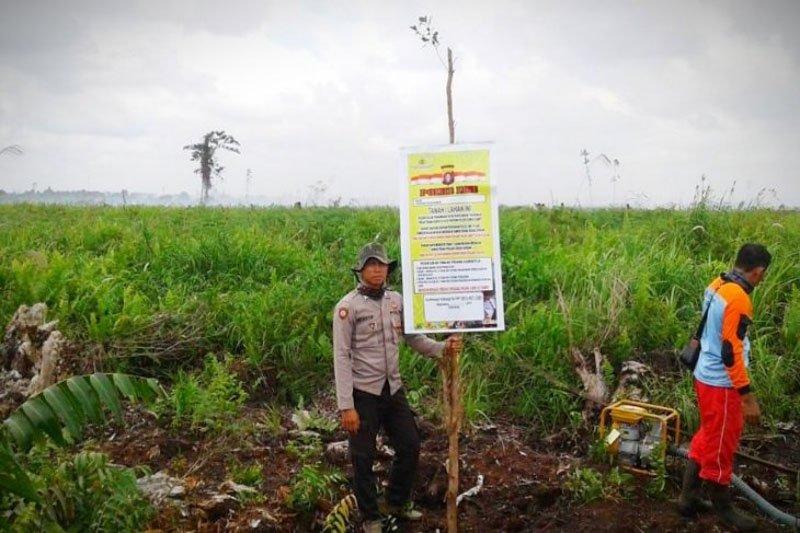 Kemenko Polhukam minta 11 provinsi rawan kebakaran hutan dan lahan tetapkan siaga darurat