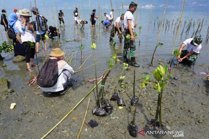 Restorasi wilayah pesisir Palu