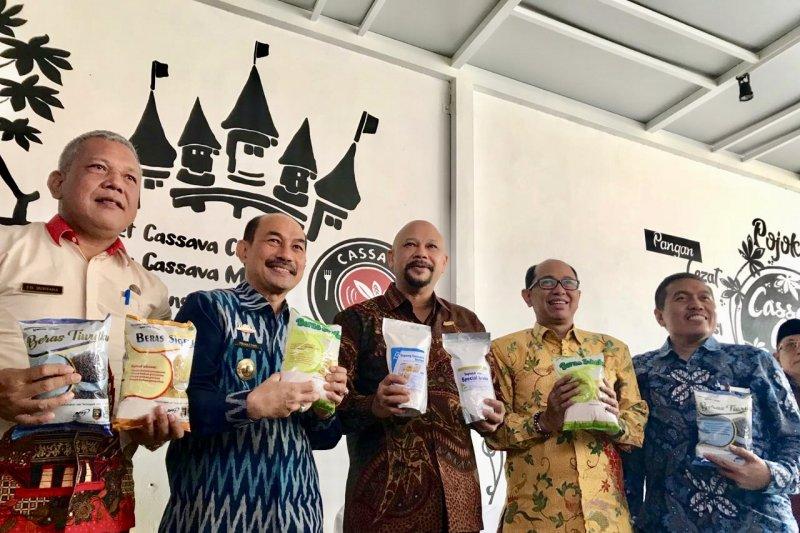 BPPT buka Cassava Castle promosikan pangan hasil Technopark Lampung Tengah