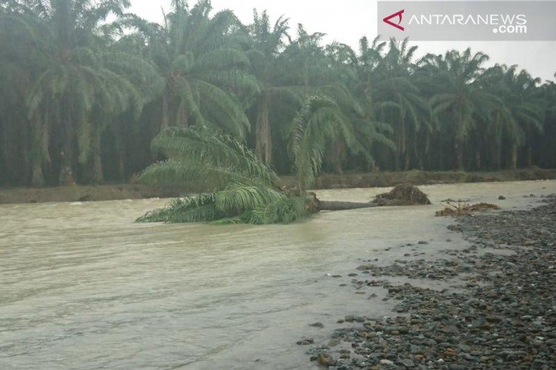 Eksploitasi alam berlebihan penyebab utama banjir bandang di Banggai