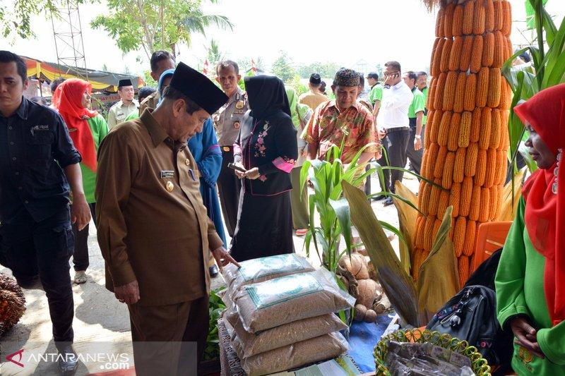 Hari Krida Pertanian ke-47 dimeriahkan penampilan hasil pertanian dan teknologi