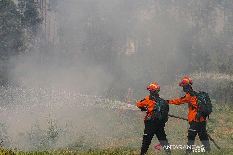 Perusahaan industri kehutanan ini dampingi 7.000 KK di Riau cegah Karhutla