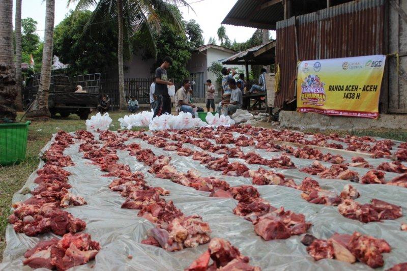 ACT targetkan distribusi 1.000 ekor hewan kurban ke seluruh Aceh