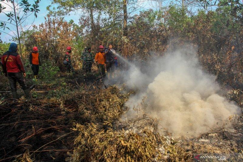 Jumlah titik panas di Provinsi Riau melonjak jadi 53