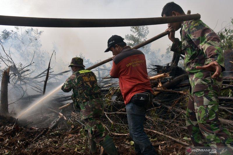 Satgas tingkatkan patroli cegah titik api di Taman Nasional Tesso Nilo
