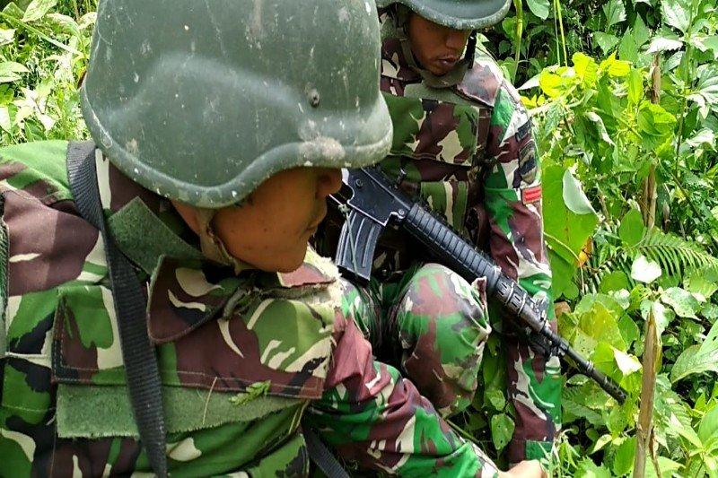 Patroli Yonif 126/KC menemukan pohon ganja di perbatasan RI-PNG