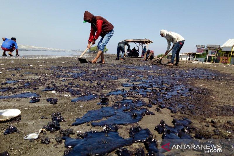 Produksi garam di Karawang terhenti akibat tumpahan minyak Pertamina