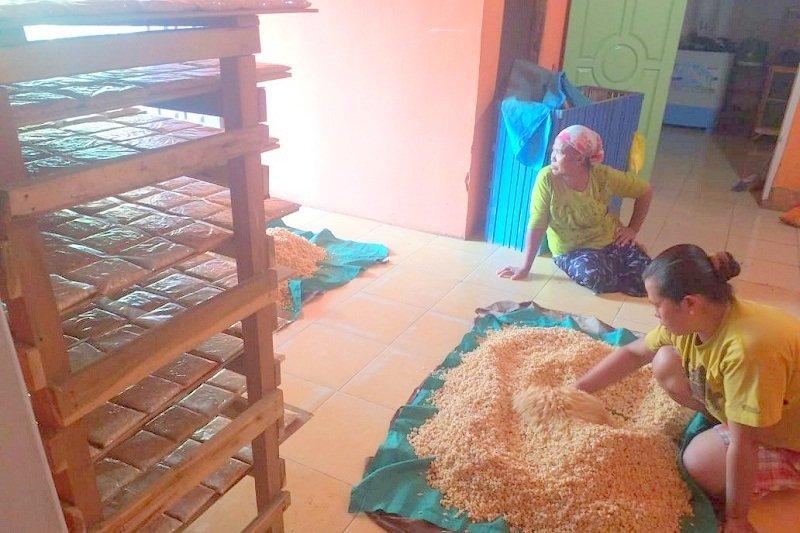 Petani Lampung Timur cari alternatif pencaharian di masa kemarau