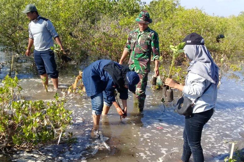 Kodim1615/Lombok Timur menanam mangrove cegah abrasi pantai