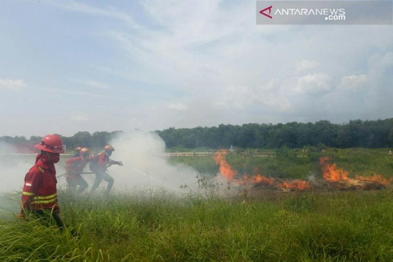 APP Sinar Mas siagakan 799 personel pemadam kebakaran di OKI