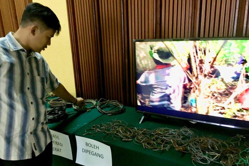 Kementerian LHK perlihatkan jerat hasil sitaan SMART-RBM