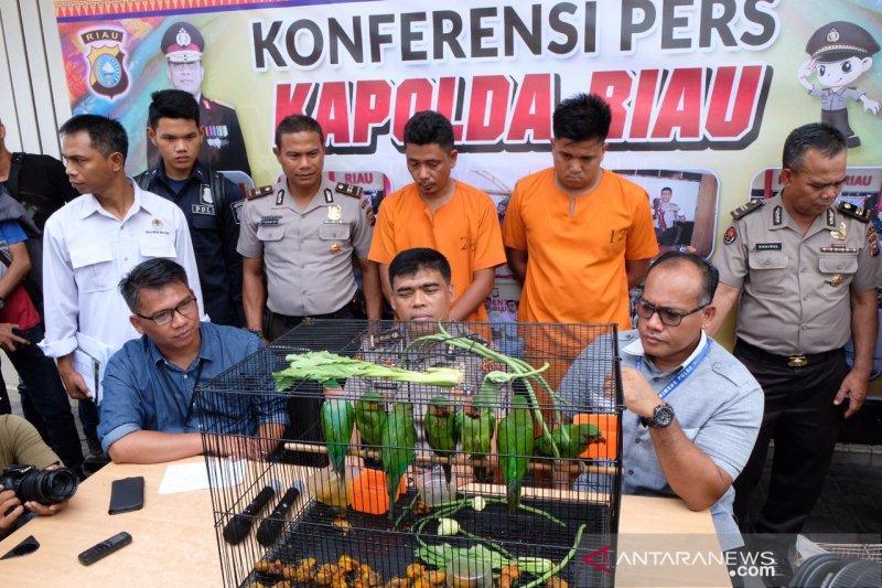 Terdakwa perdagangan satwa dilindungi dituntut setahun tiga bulan penjara