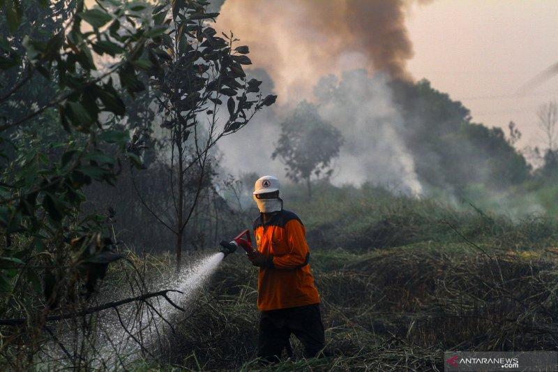 Asap kebakaran hutan dan lahan terdeteksi walau titik api padam