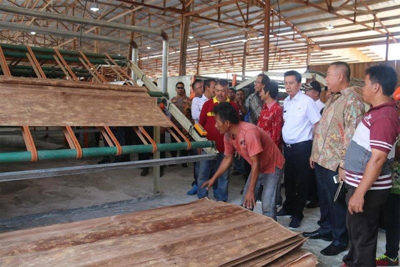 Bupati Barito Utara resmikan pabrik veneer