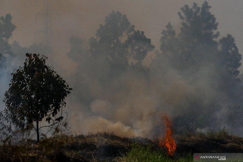 BMKG nyatakan Riau terbanyak titik api di Sumatera