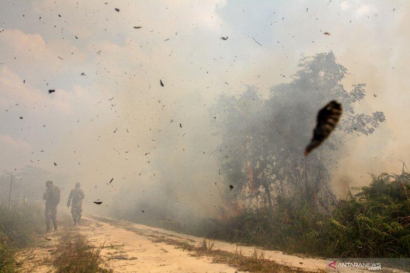 Pemadaman kebakaran gambut perkampungan Indragiri Hilir terkendala angin kencang