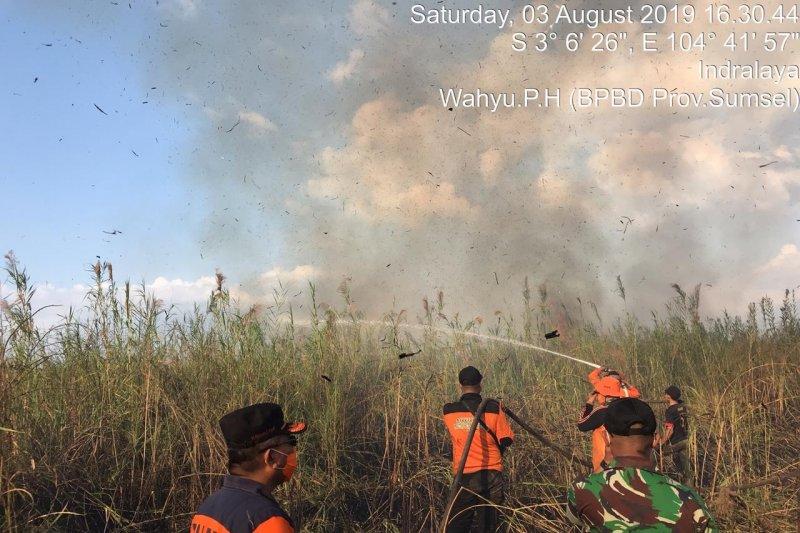 Sejak hari Jumat, 49 hektare lahan di Ogan Ilir terbakar