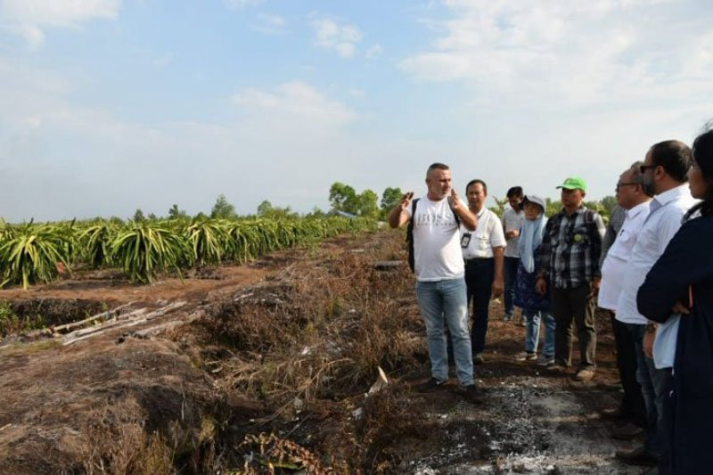 Gubernur Kalteng: UEA ingin tanamkan investasi pangan 500 juta dolar