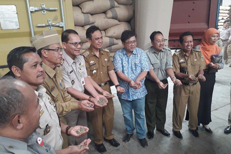 Ekspor kopi Lampung ke Aljazair meningkat 94 persen