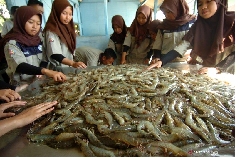 KKP ajak warga belajar usaha budi daya perikanan di SUPM