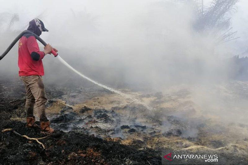 Lahan gambut di sekitar area sumur minyak di Siak terbakar