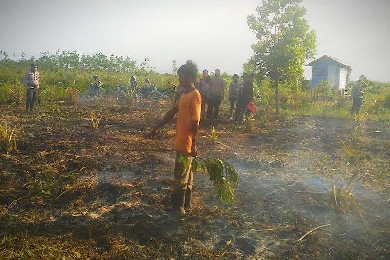 DAD minta pemerintah dan aparat hentikan kriminalisasi petani pembakar lahan